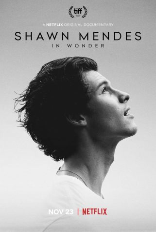 Shawn Mendes: In Wonder.
