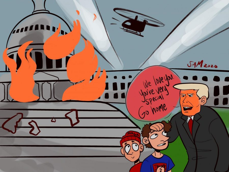 The Capitol Insurrection