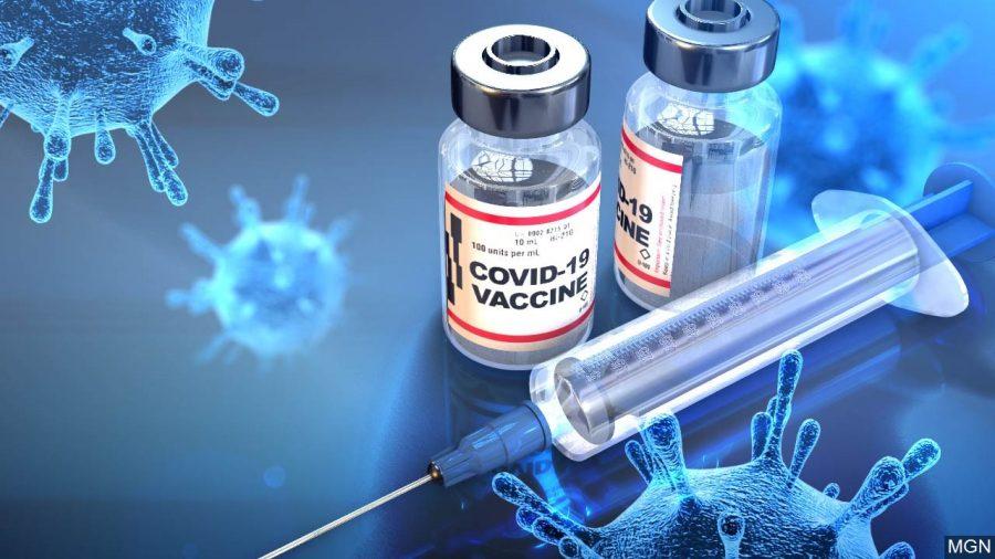 The+Coronavirus+Vaccine+Develops